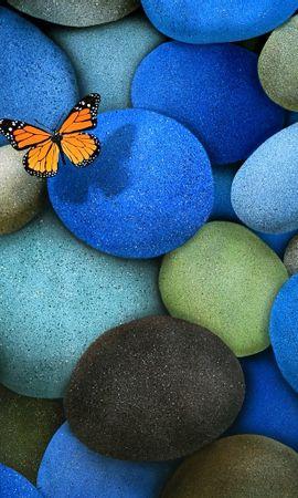 41228 Salvapantallas y fondos de pantalla Insectos en tu teléfono. Descarga imágenes de Mariposas, Insectos gratis