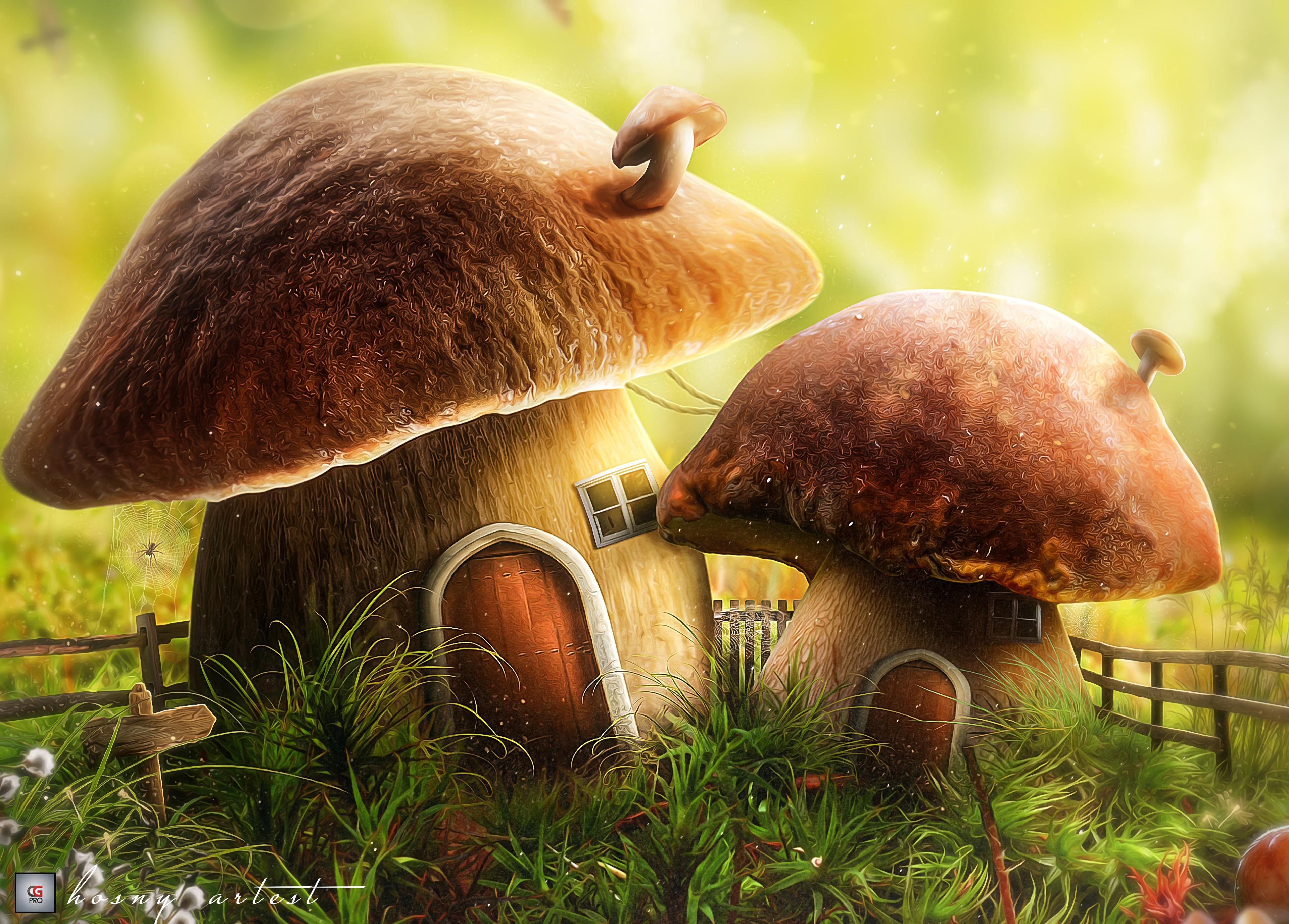 110621 Hintergrundbild 240x320 kostenlos auf deinem Handy, lade Bilder Kunst, Haus, Pilz, Eine Tür, Die Tür 240x320 auf dein Handy herunter