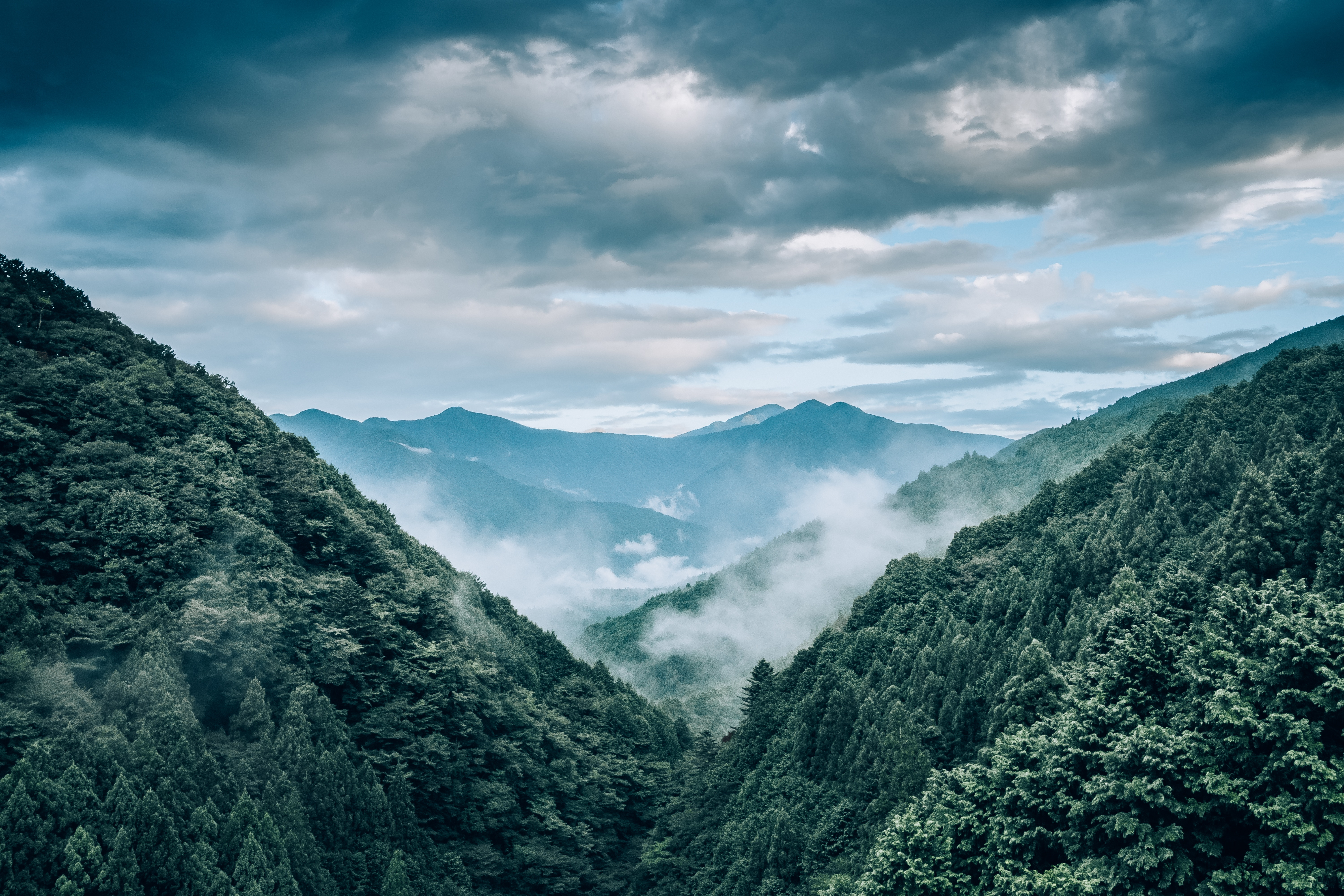 115683 free wallpaper 720x1520 for phone, download images Landscape, Nature, Trees, Mountains, View From Above, Fog 720x1520 for mobile