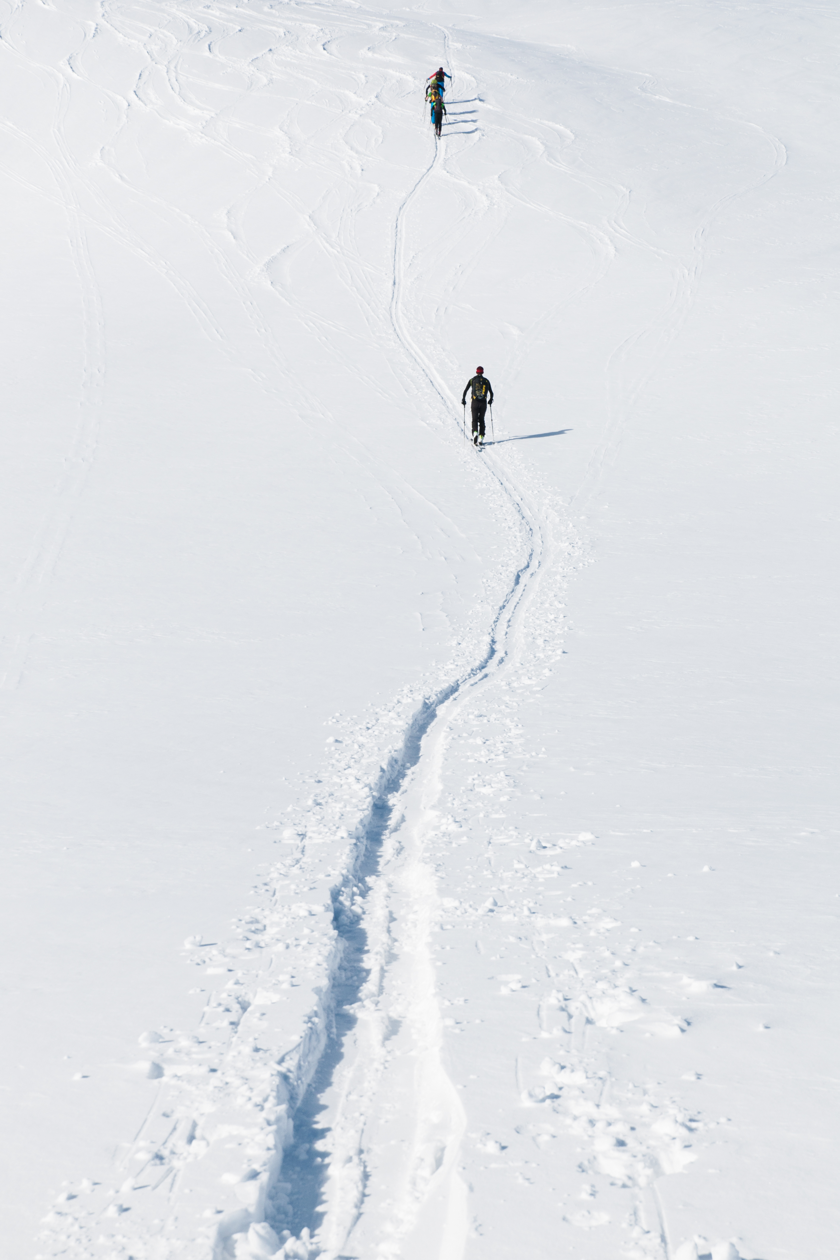 64633 скачать обои Спорт, Лыжники, Гора, Снег, Тропинка - заставки и картинки бесплатно