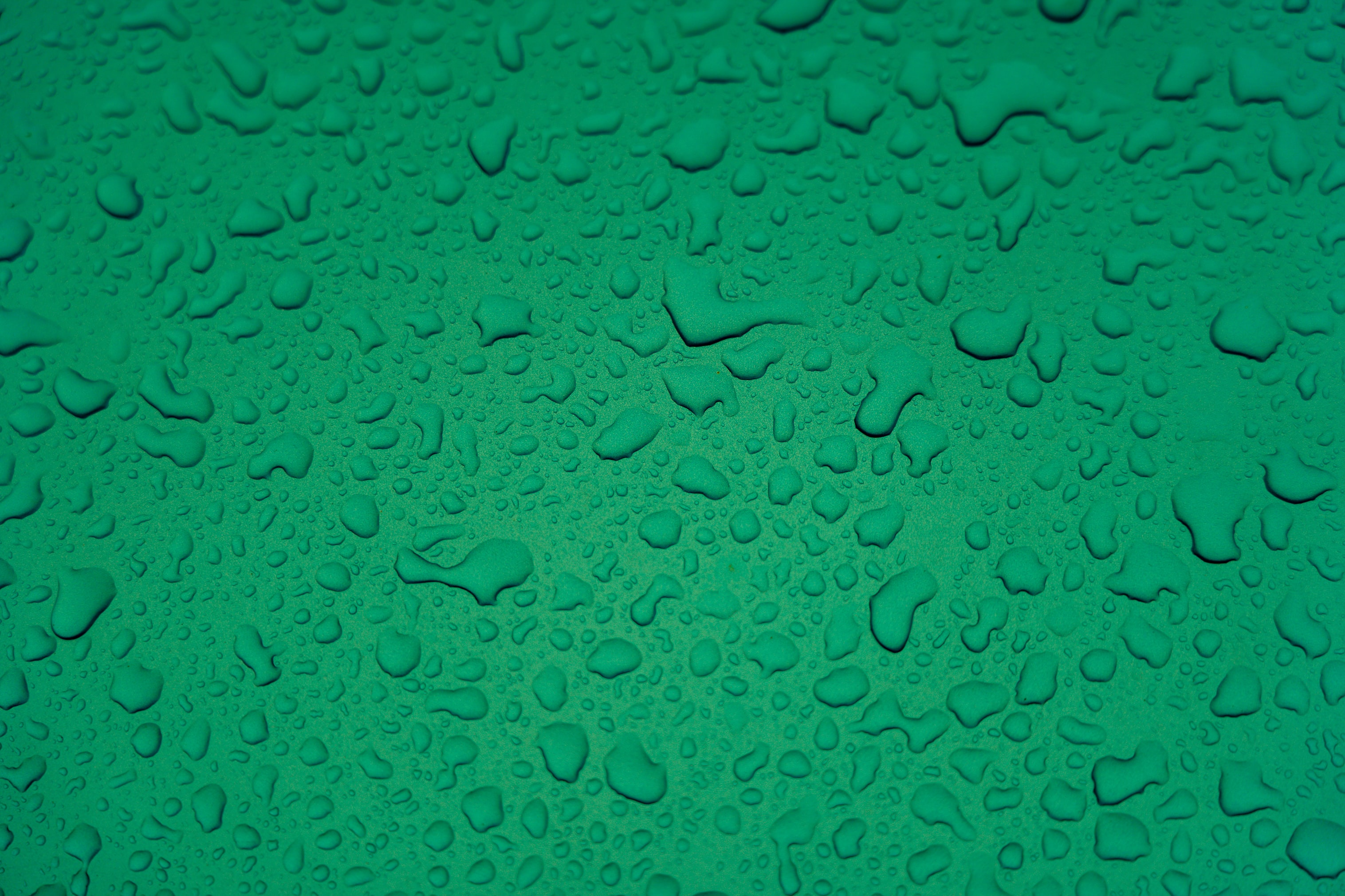 99753 Screensavers and Wallpapers Drops for phone. Download Drops, Water, Macro, Wet, Surface pictures for free