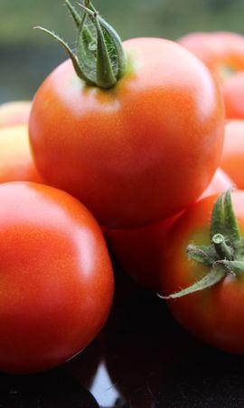 117751 télécharger le fond d'écran Nourriture, Tomate, Mûr, Légumes - économiseurs d'écran et images gratuitement