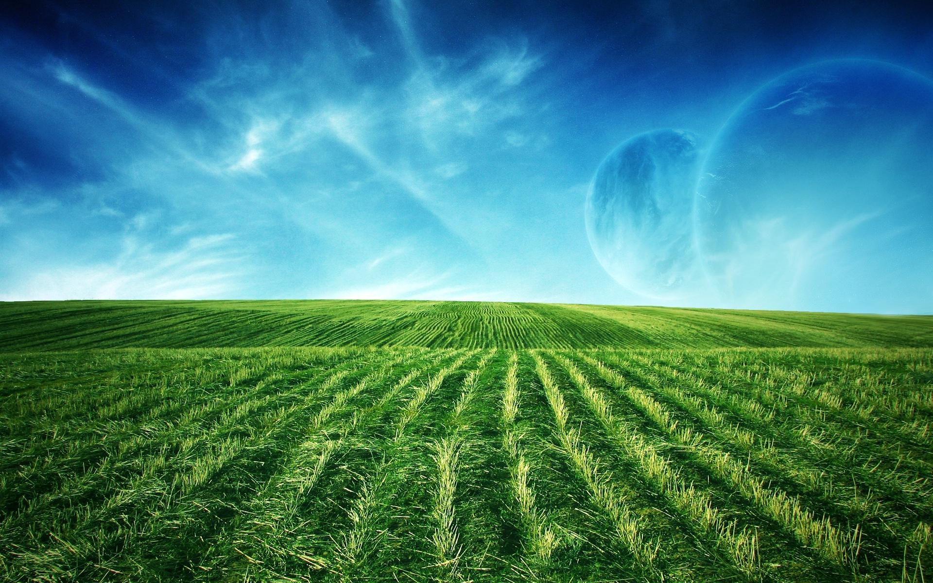 1192 скачать обои Пейзаж, Трава, Небо - заставки и картинки бесплатно
