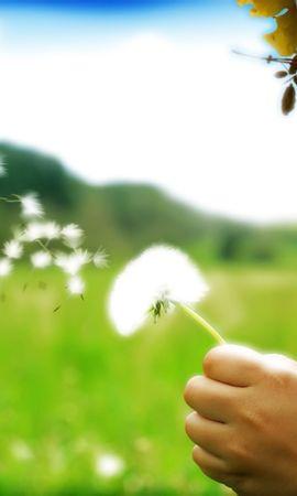 2610 скачать обои Растения, Люди, Дети, Одуванчики - заставки и картинки бесплатно