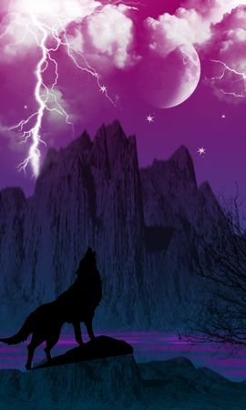 14166 download wallpaper Animals, Wolfs, Sky, Lightning, Pictures screensavers and pictures for free