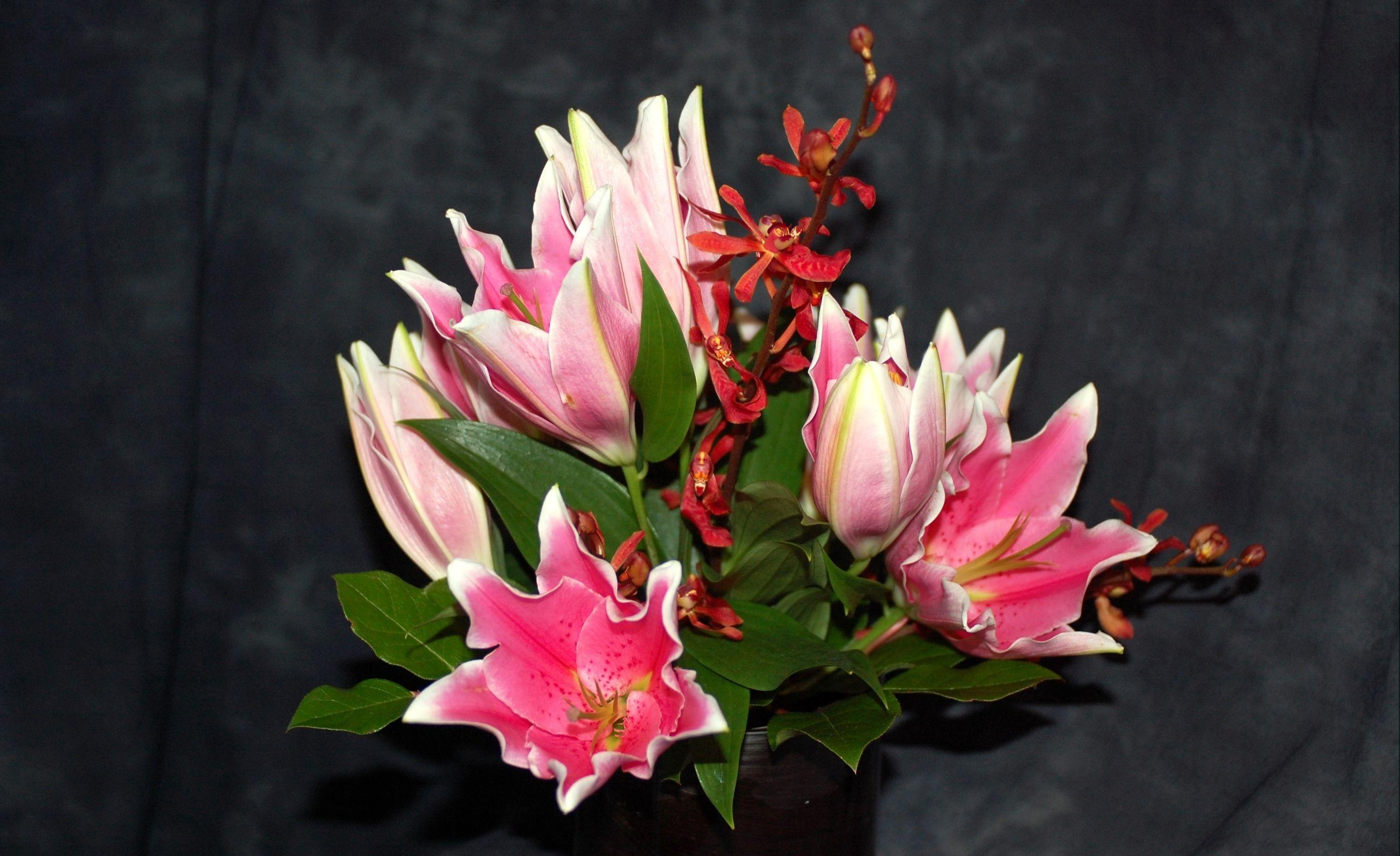 83982 download wallpaper Flowers, Alstroemeria, Orchids, Bouquet, Leaves, Background screensavers and pictures for free