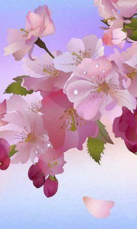 39817 descargar fondo de pantalla Plantas, Flores, Imágenes: protectores de pantalla e imágenes gratis