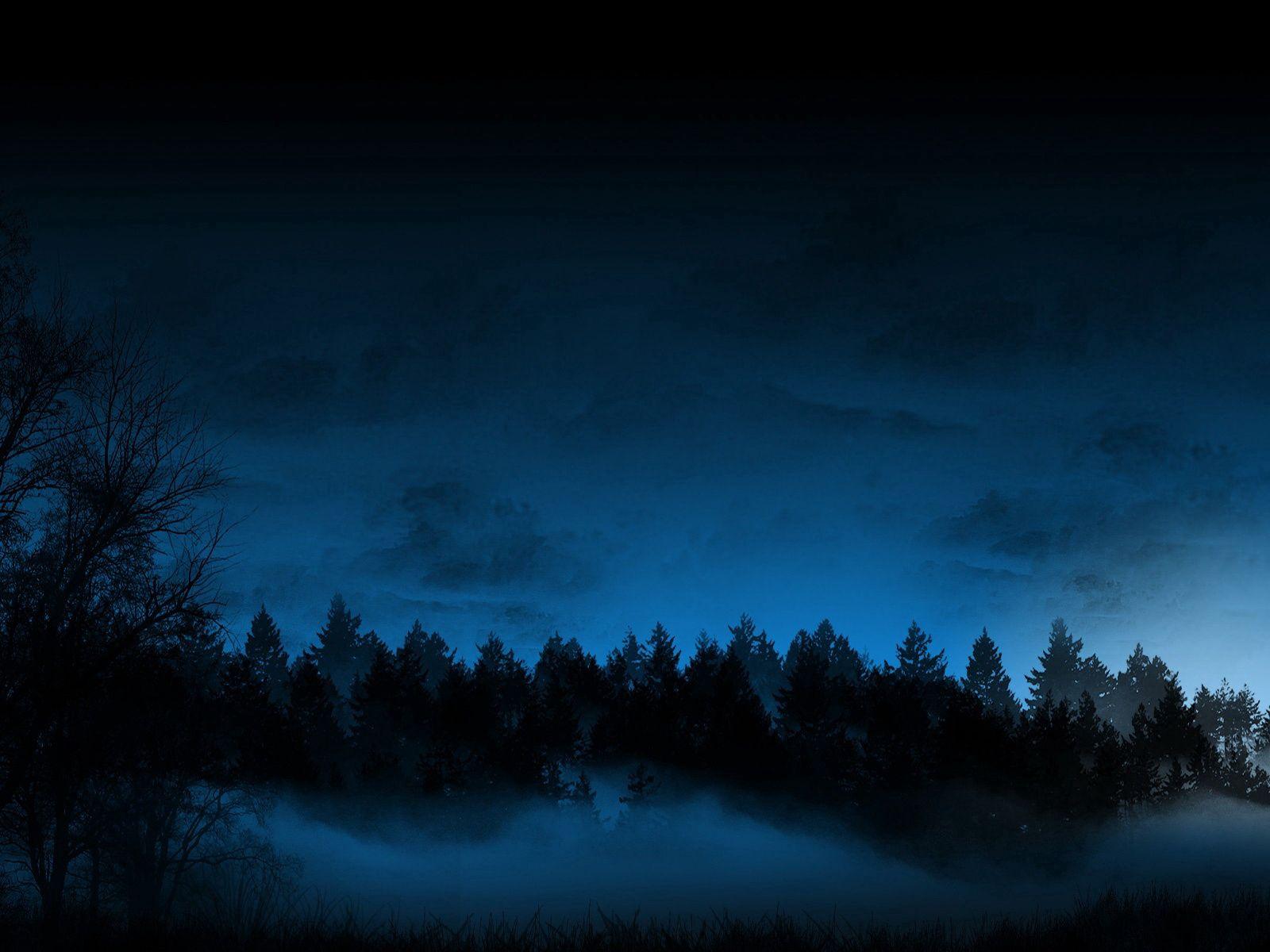 65533 обои 2160x3840 на телефон бесплатно, скачать картинки Темные, Деревья, Ночь, Туман, Ели 2160x3840 на мобильный