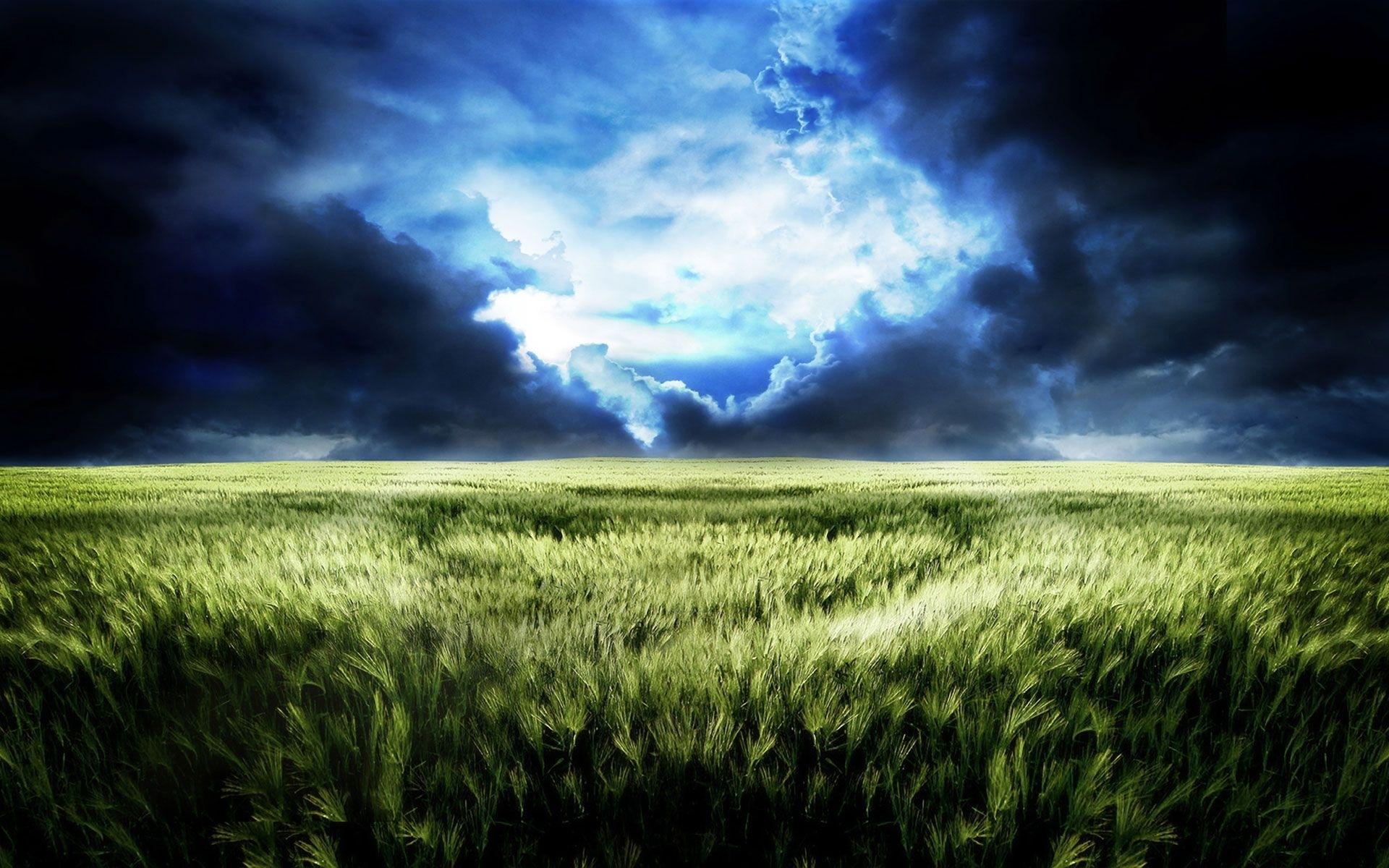 23371 скачать обои Пейзаж, Поля, Облака - заставки и картинки бесплатно
