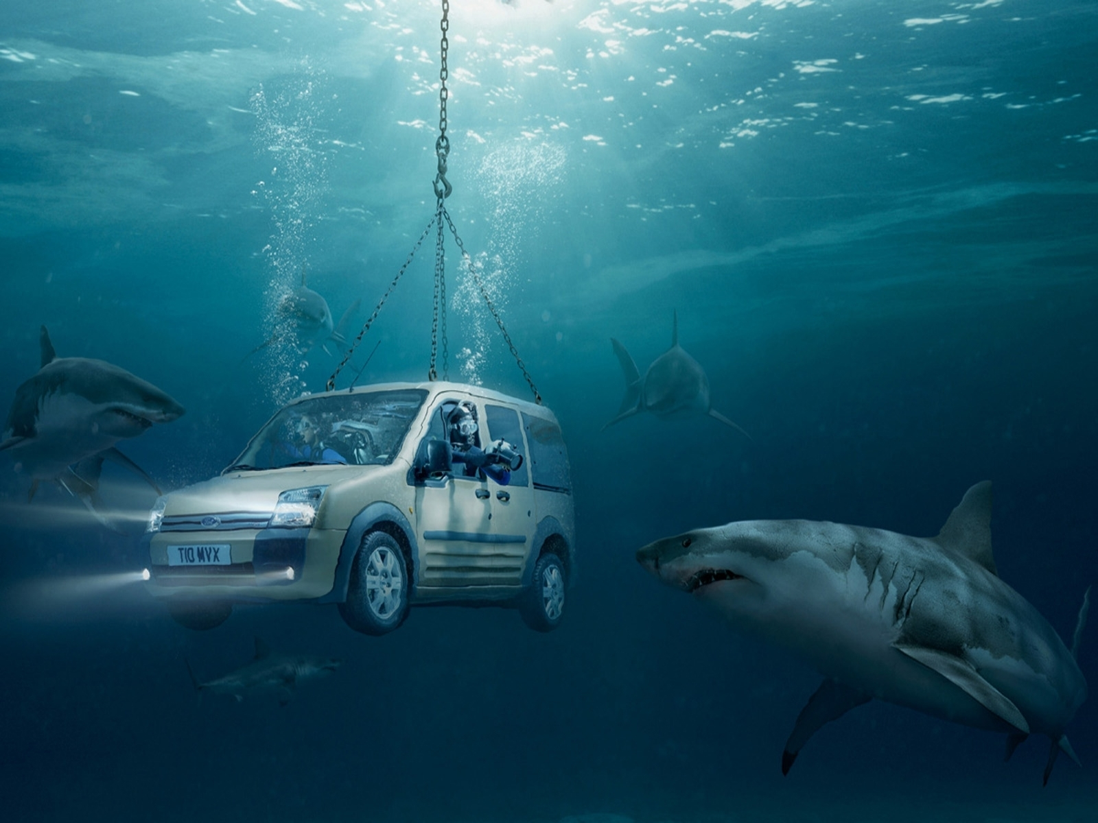 3576 download wallpaper Funny, Auto, Sea, Sharks, Ford screensavers and pictures for free