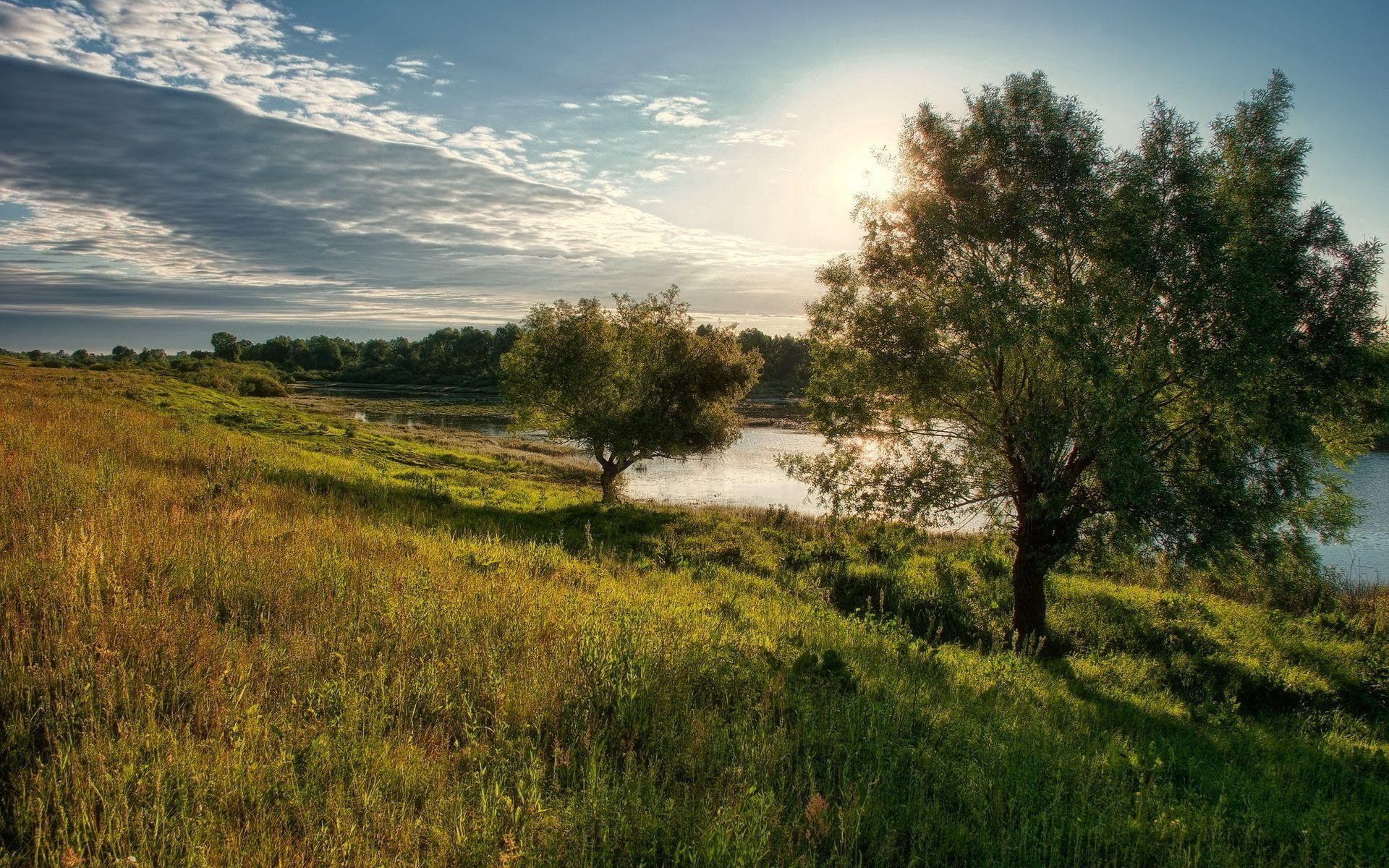 114639 скачать обои Природа, Деревья, Небо, Солнце, Облака, Озеро, Берег, Свет, Тени, Поляна, Полдень - заставки и картинки бесплатно
