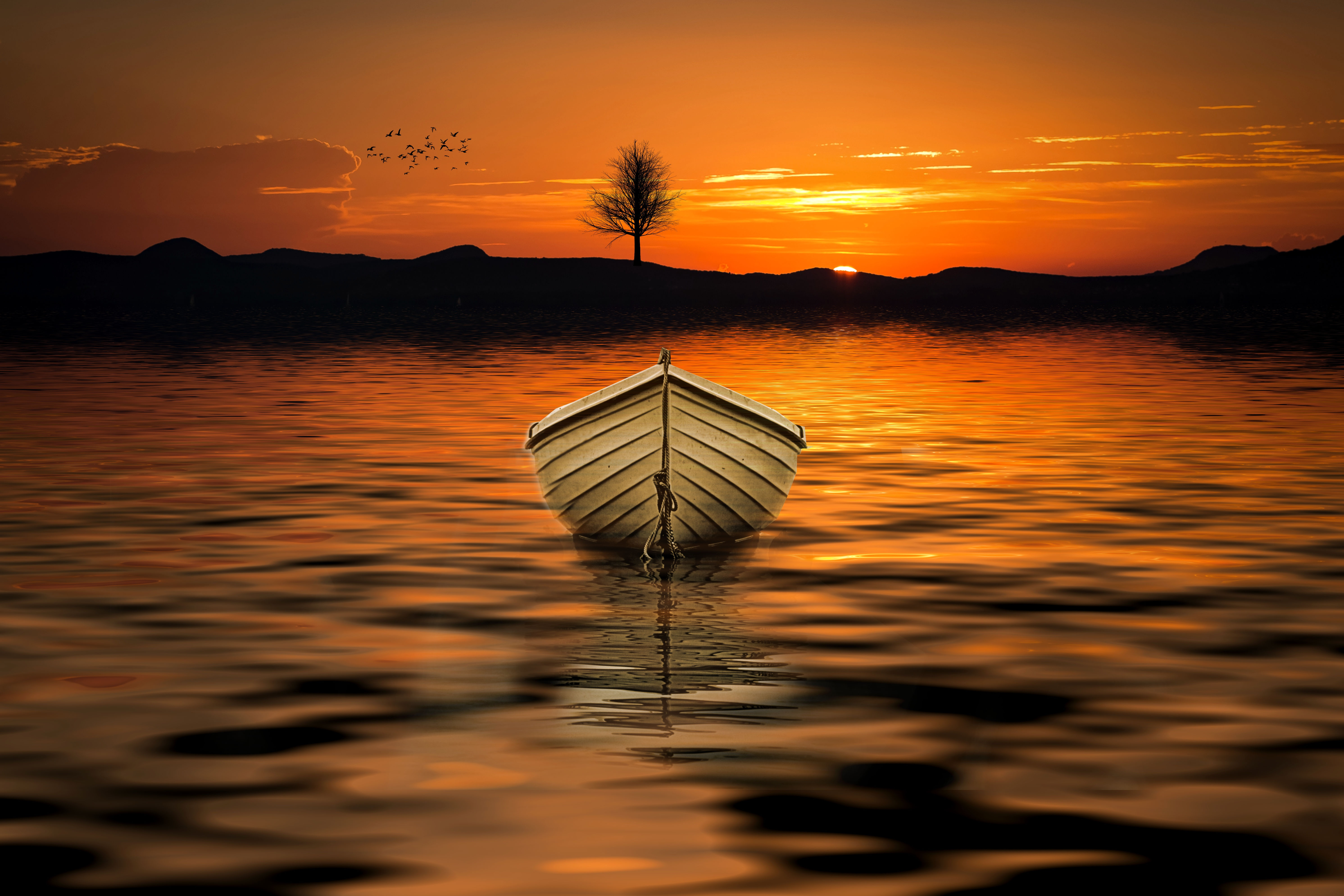 152358 Screensavers and Wallpapers Boat for phone. Download Nature, Sunset, Horizon, Lake, Wood, Tree, Boat pictures for free