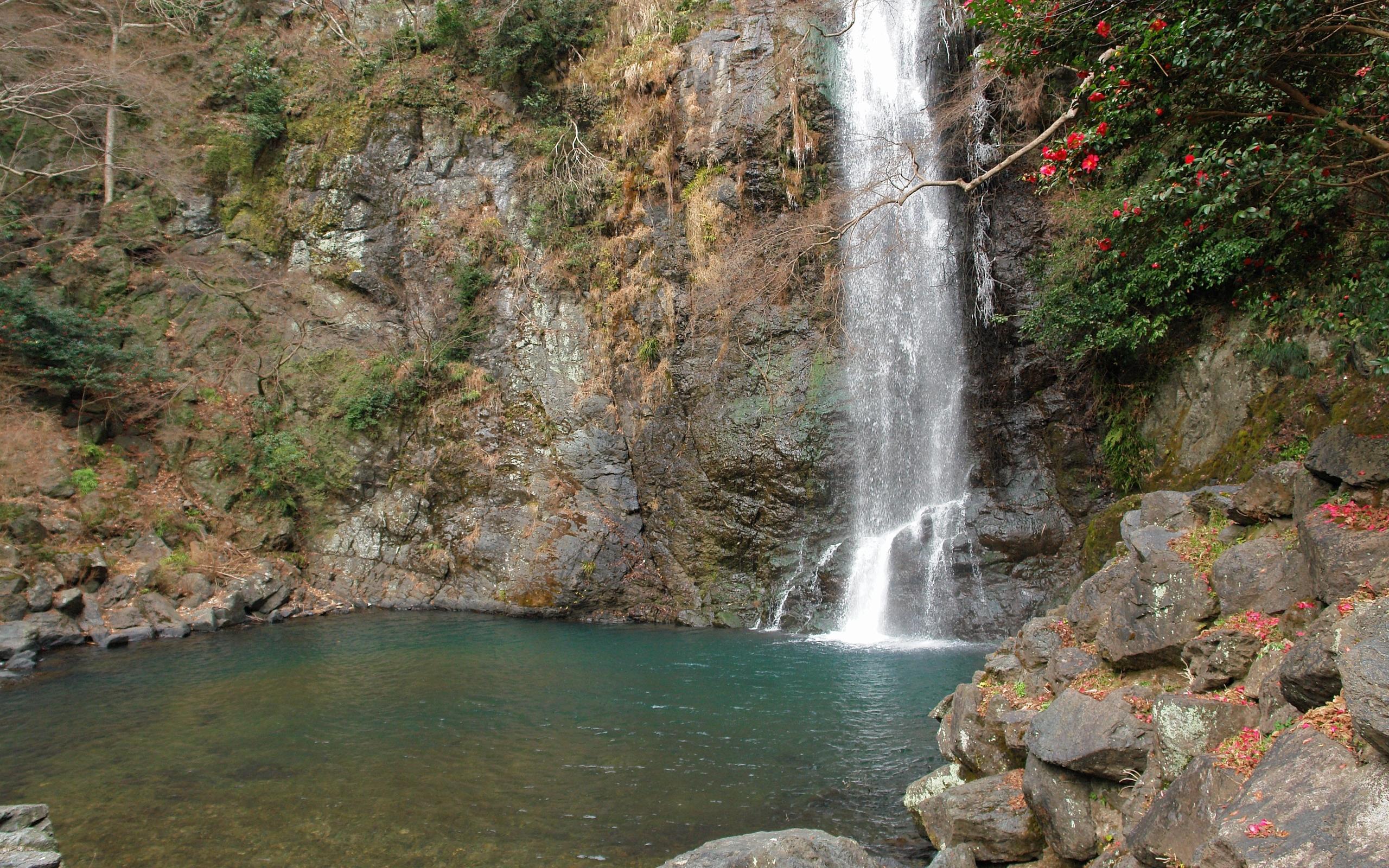 2353 скачать обои Пейзаж, Вода, Камни, Водопады - заставки и картинки бесплатно