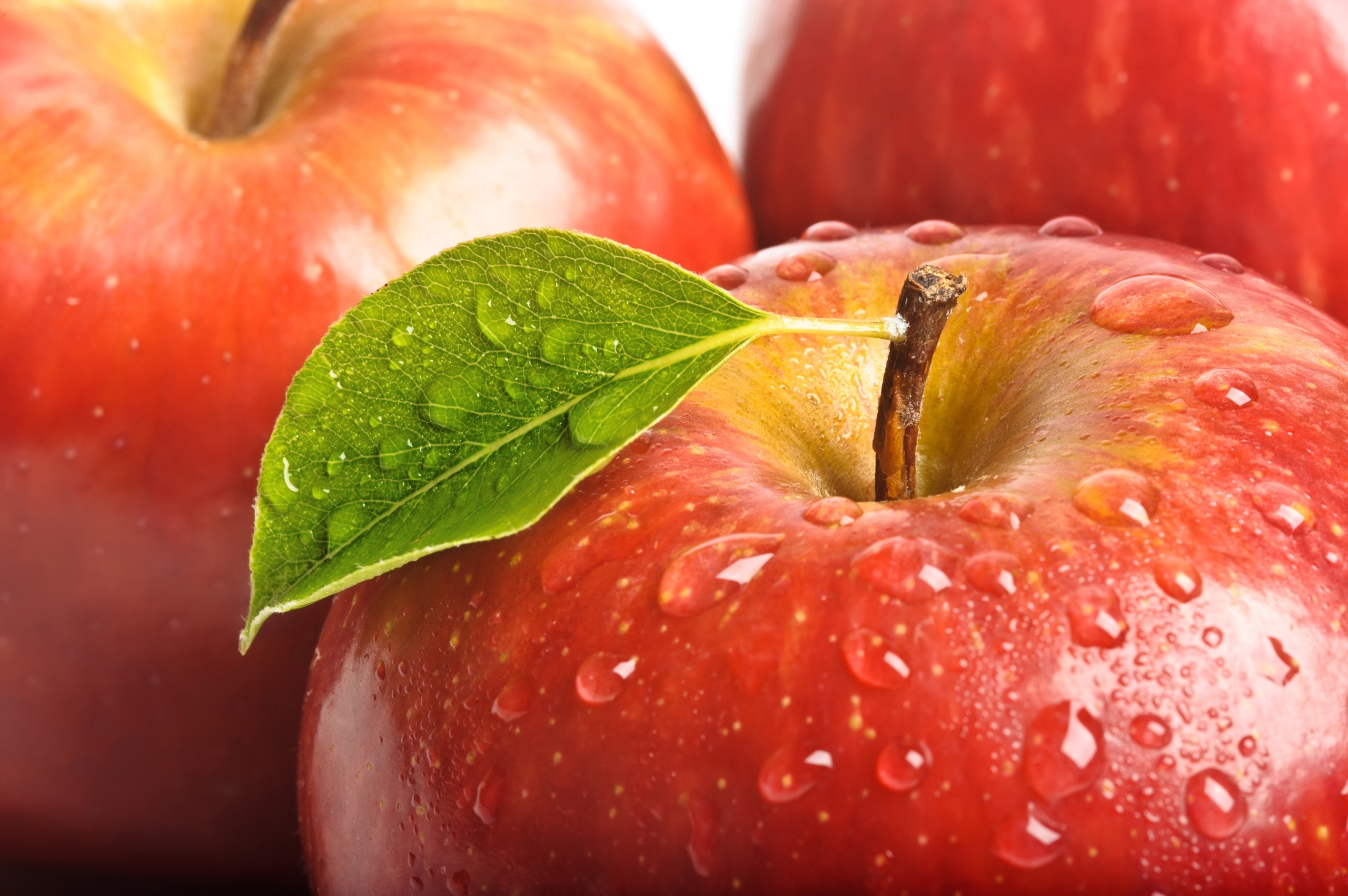 22319 download wallpaper Fruits, Food, Apples, Drops screensavers and pictures for free