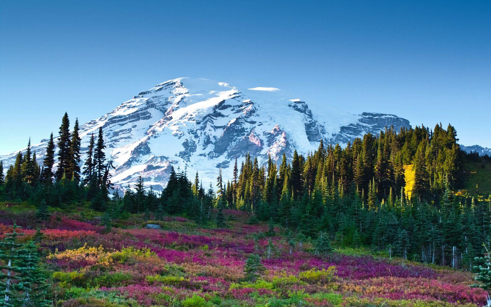 148082 télécharger le fond d'écran Nature, Montagne, Sky, Mangé, Ate, Paysage, Fleurs - économiseurs d'écran et images gratuitement