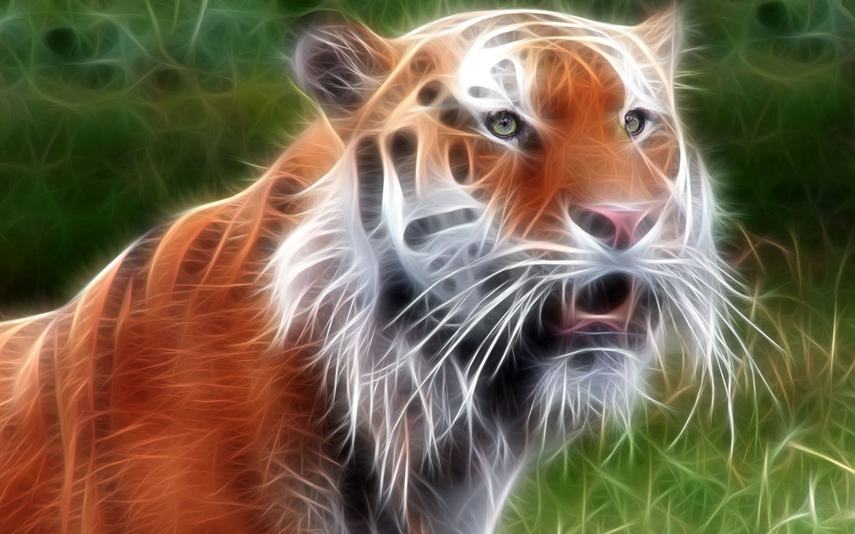 58873 download wallpaper Abstract, Tiger, Muzzle, Shine, Light, Lines, Glow screensavers and pictures for free