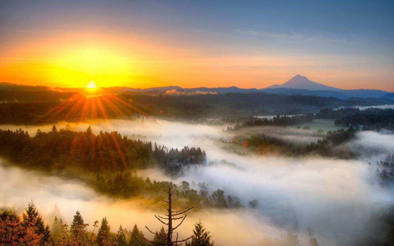 16404 скачать обои Пейзаж, Закат, Солнце - заставки и картинки бесплатно