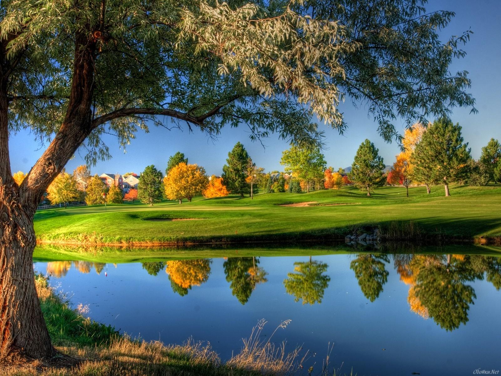 20740 Заставки и Обои Осень на телефон. Скачать Осень, Пейзаж, Деревья, Река картинки бесплатно