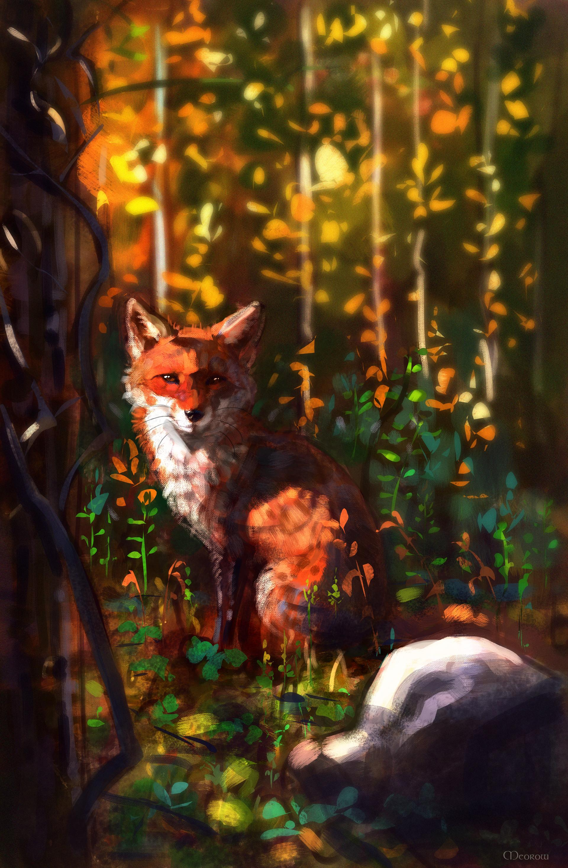 72825 Hintergrundbild herunterladen Kunst, Sicht, Meinung, Wilde Natur, Wildlife, Tier, Ein Fuchs, Fuchs - Bildschirmschoner und Bilder kostenlos