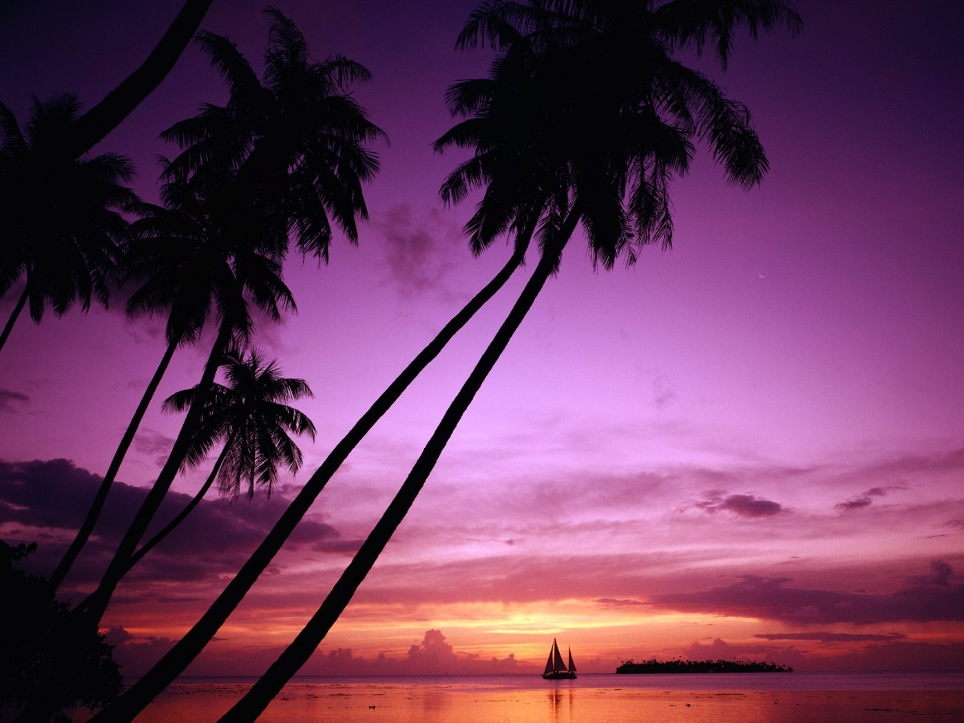 44048 скачать Фиолетовые обои на телефон бесплатно, Пейзаж, Природа, Закат Фиолетовые картинки и заставки на мобильный
