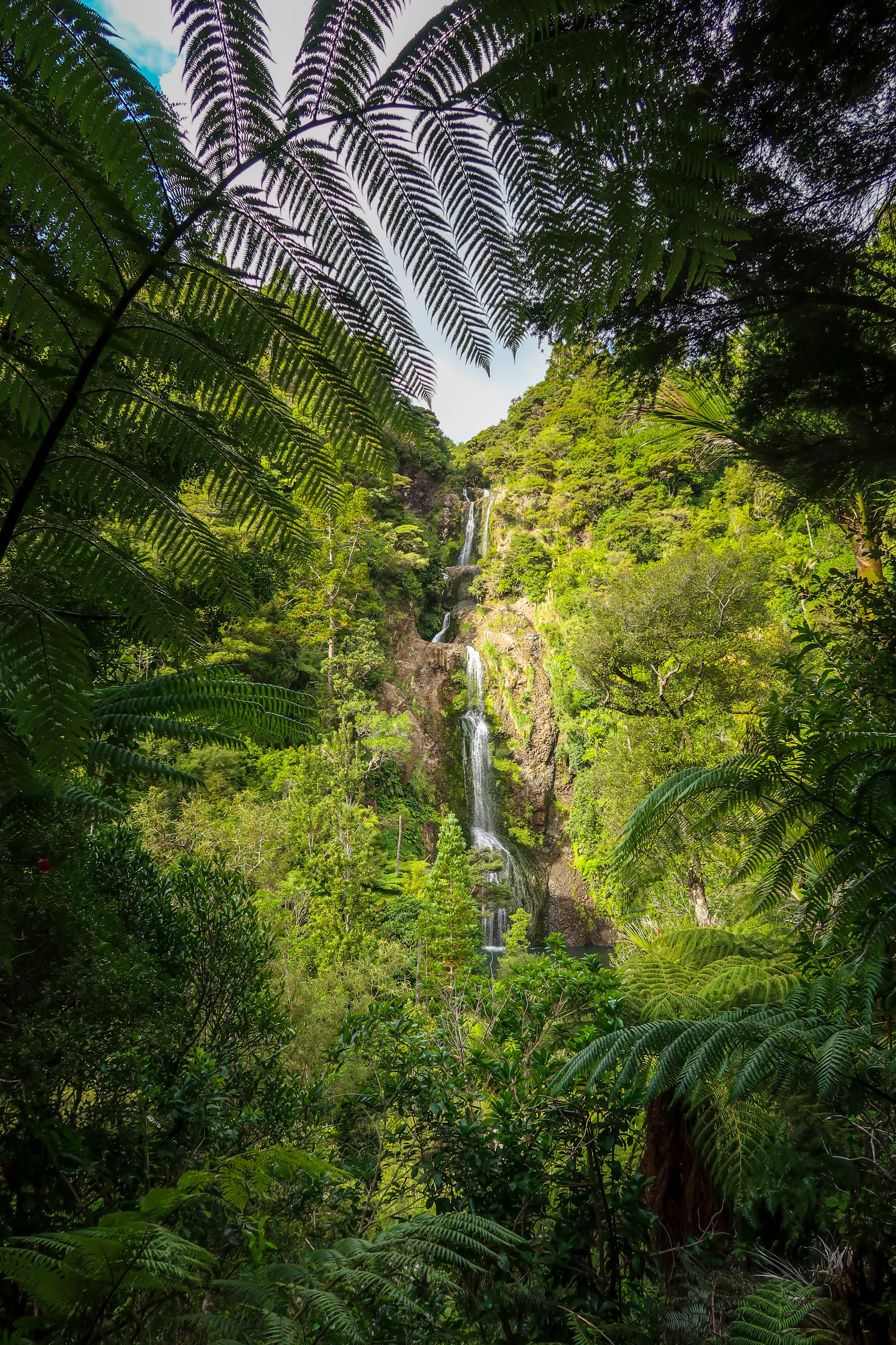64778 download wallpaper Nature, Waterfall, Jungle, Tropics, Trees, Bush screensavers and pictures for free