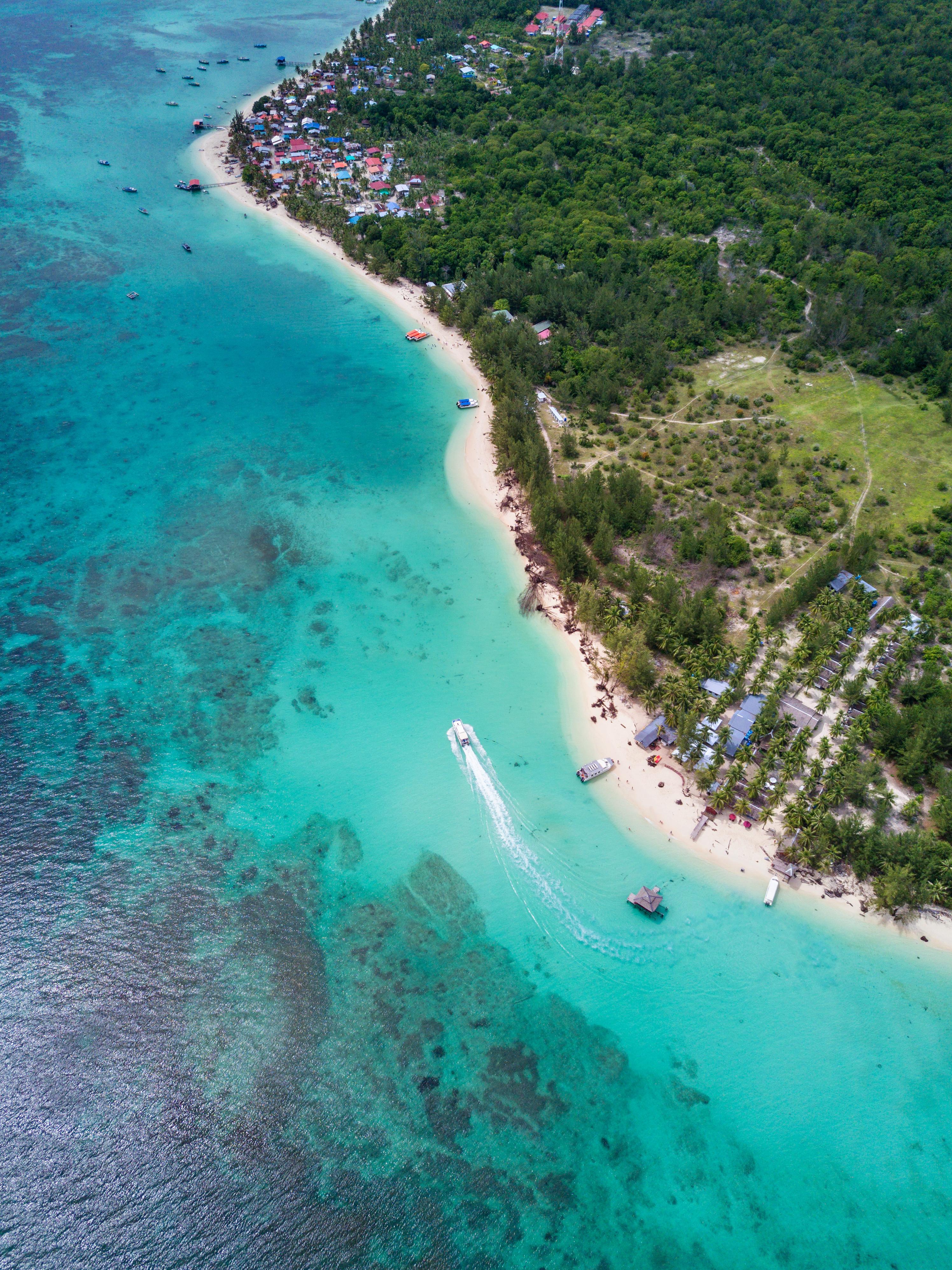 133188壁紙のダウンロード自然, 海岸, 海, ビーチ, 木, 上から見る-スクリーンセーバーと写真を無料で