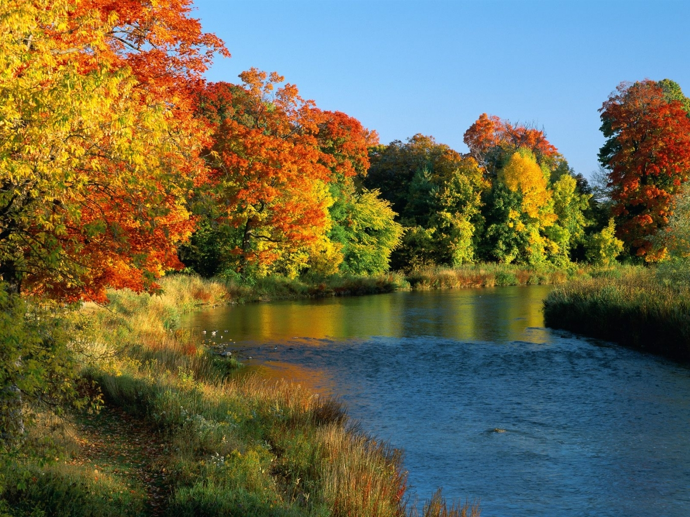 29565 download wallpaper Landscape, Rivers, Autumn screensavers and pictures for free