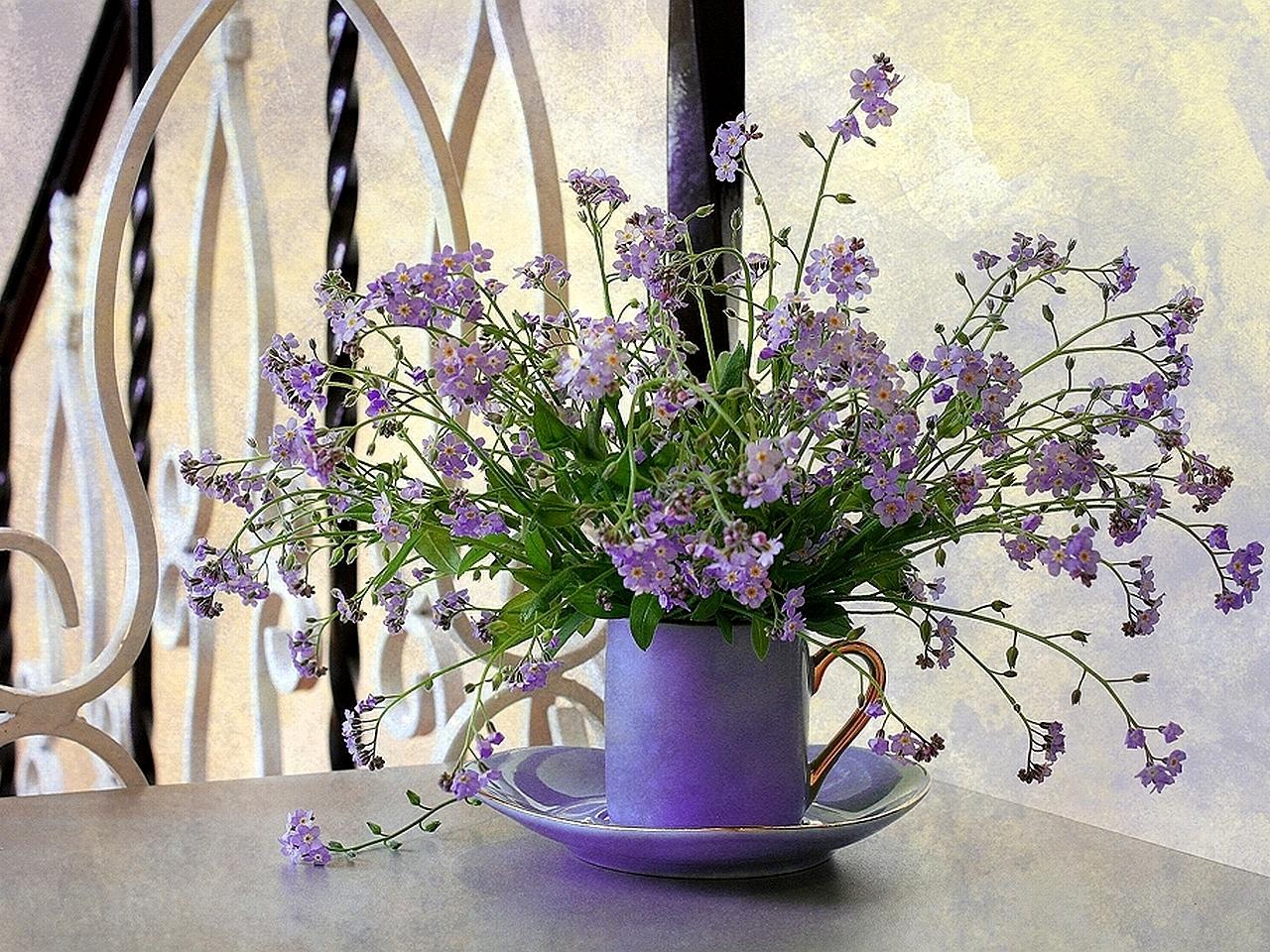 28678 скачать обои Растения, Цветы, Букеты - заставки и картинки бесплатно