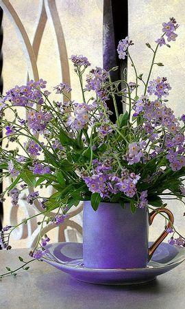 28678 baixar papel de parede Plantas, Flores, Bouquets - protetores de tela e imagens gratuitamente