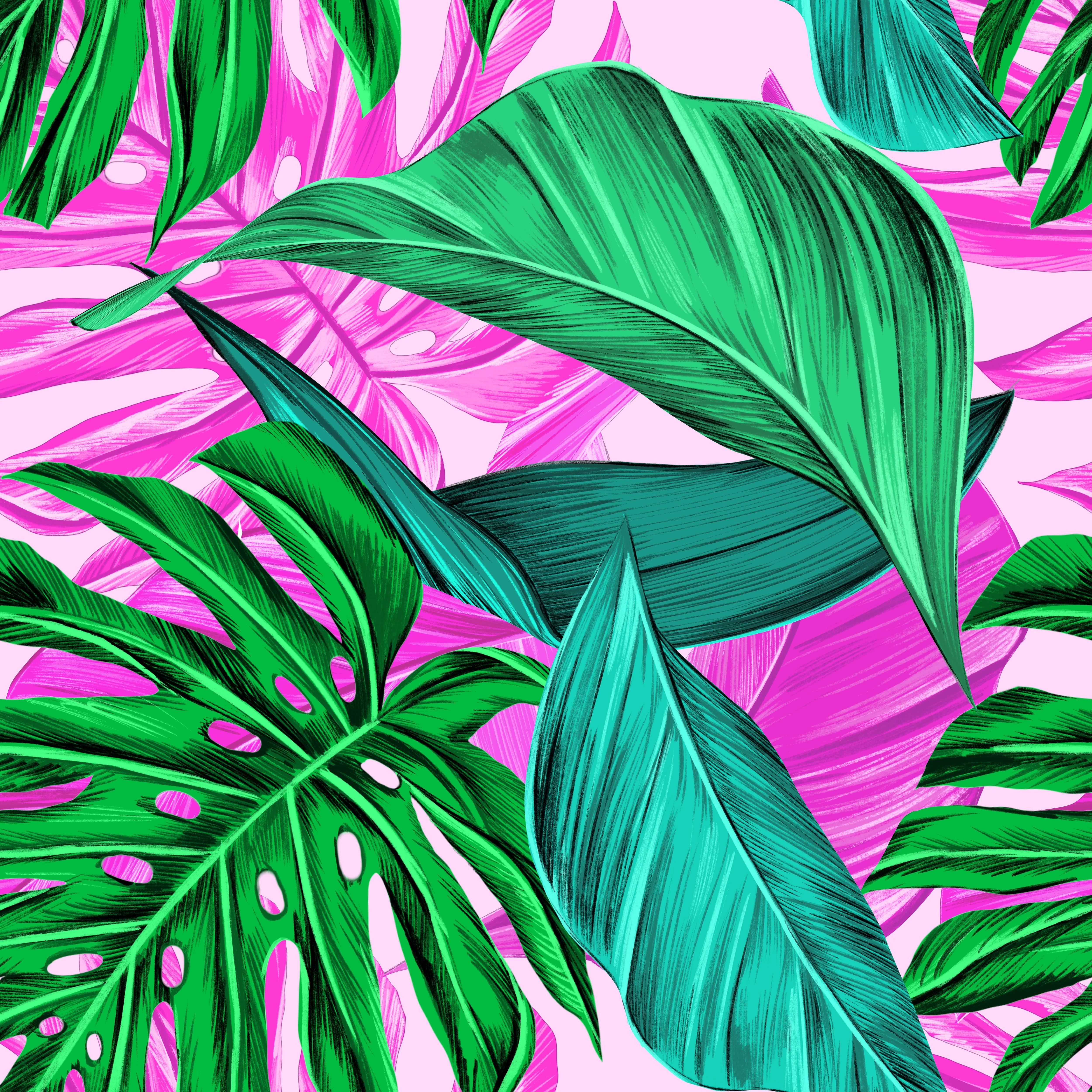 84817 免費下載壁紙 纹理, 叶, 图案, 形态, 明亮的, 明亮, 热带 屏保和圖片