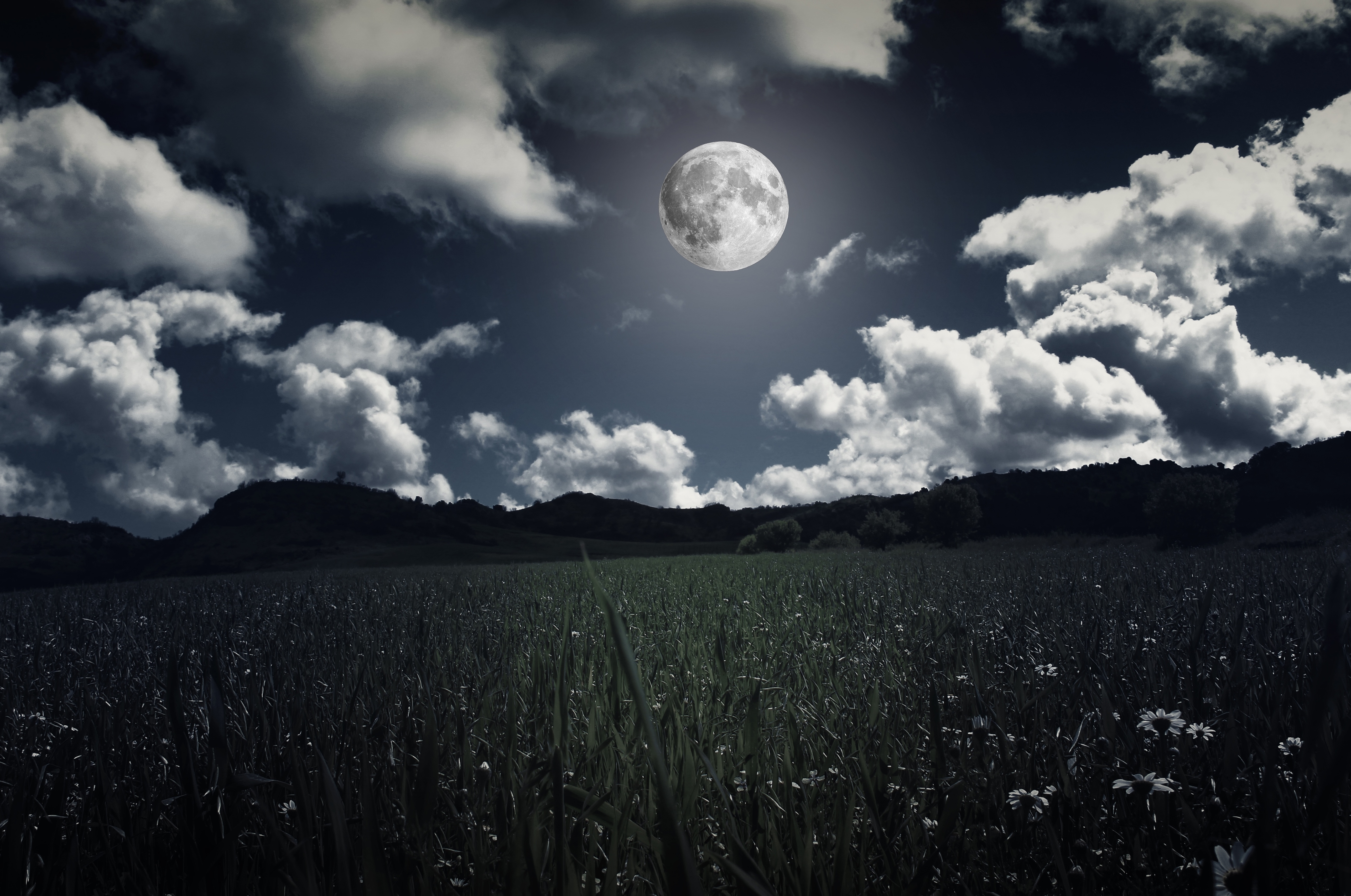 87312 Screensavers and Wallpapers Photoshop for phone. Download Nature, Grass, Clouds, Moon, Field, Photoshop, Full Moon pictures for free
