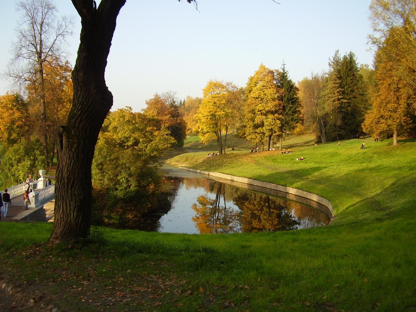 2349 скачать обои Пейзаж, Деревья, Парки - заставки и картинки бесплатно