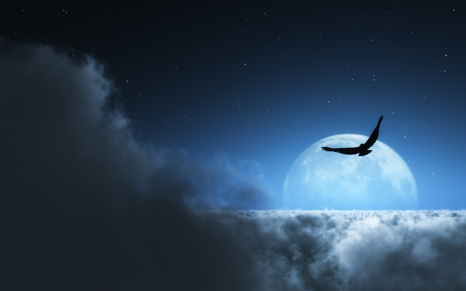 13270 скачать обои Животные, Пейзаж, Птицы, Небо, Ночь, Облака, Луна - заставки и картинки бесплатно