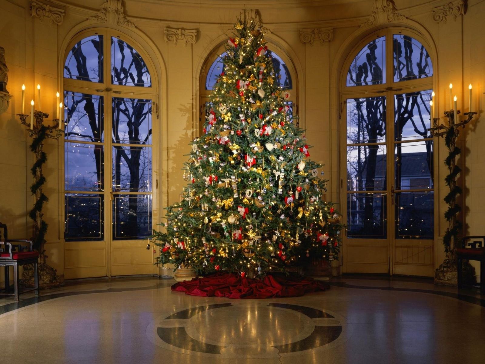 3170 скачать обои Новый Год (New Year), Рождество (Christmas, Xmas), Елки, Праздники - заставки и картинки бесплатно