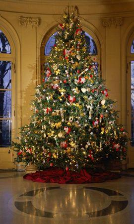 3170 скачать обои Праздники, Новый Год (New Year), Елки, Рождество (Christmas, Xmas) - заставки и картинки бесплатно