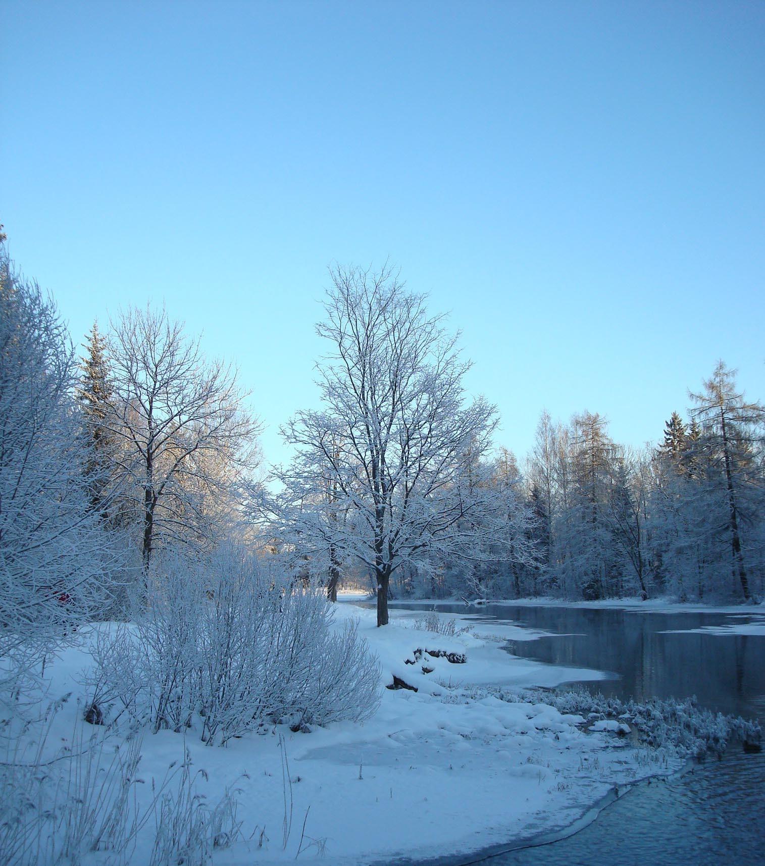 11259 скачать обои Пейзаж, Зима, Река, Деревья, Снег - заставки и картинки бесплатно