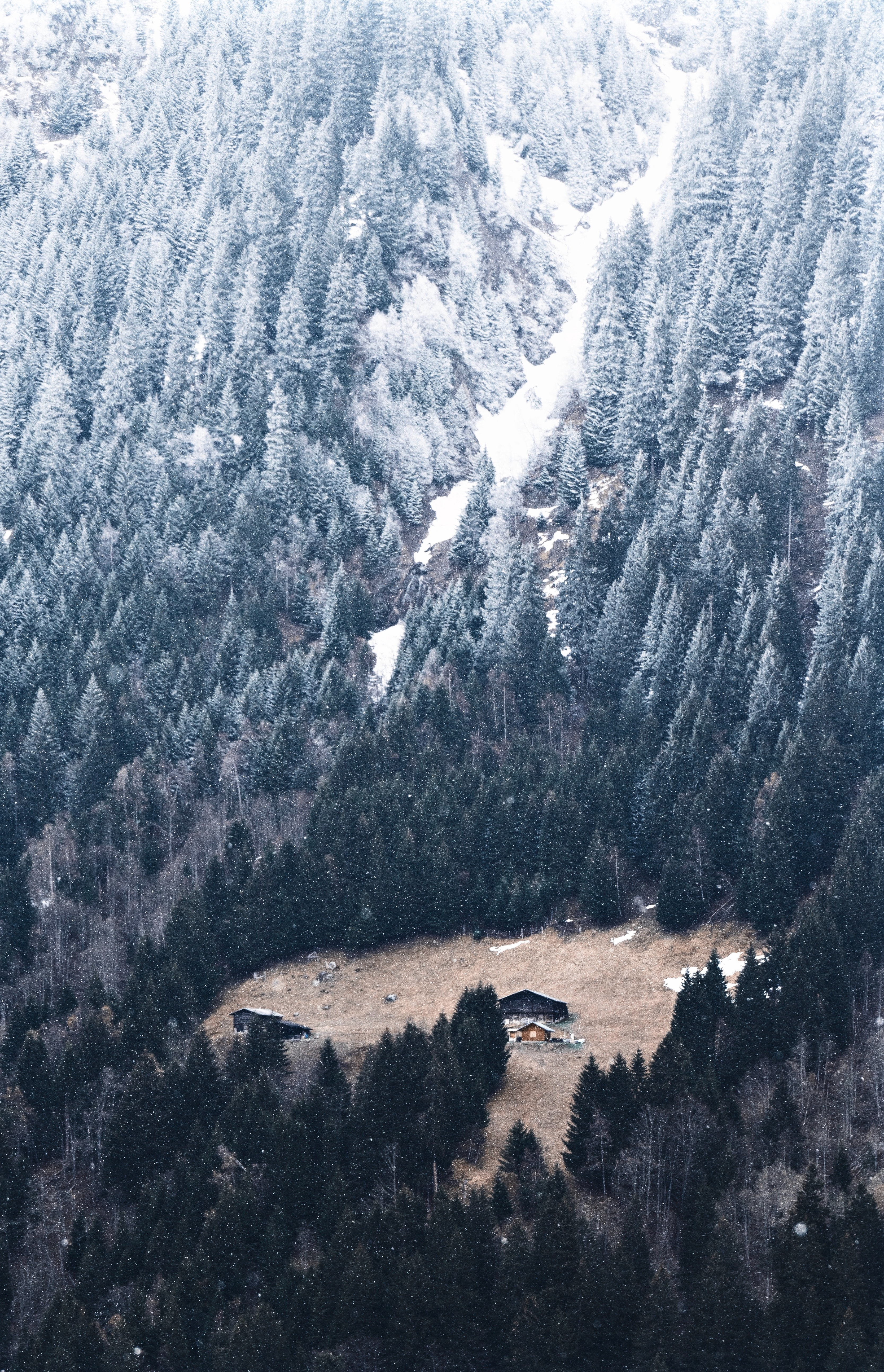 135798 download wallpaper Nature, Slope, Forest, Small House, Lodge, Mountain, Snow screensavers and pictures for free