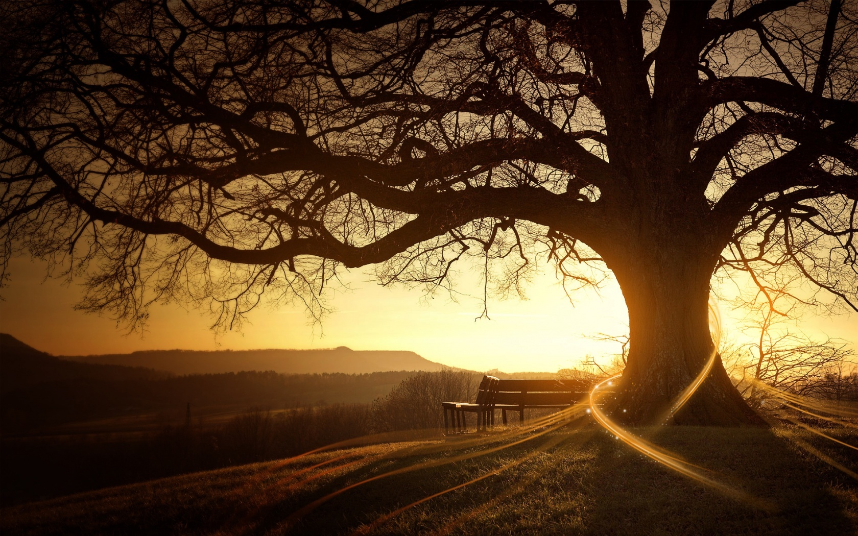 16507 download wallpaper Landscape, Trees, Sunset, Art Photo screensavers and pictures for free