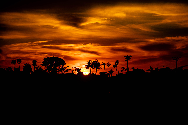 153607 скачать обои Темные, Закат, Силуэт, Черный, Солнце, Пальмы - заставки и картинки бесплатно