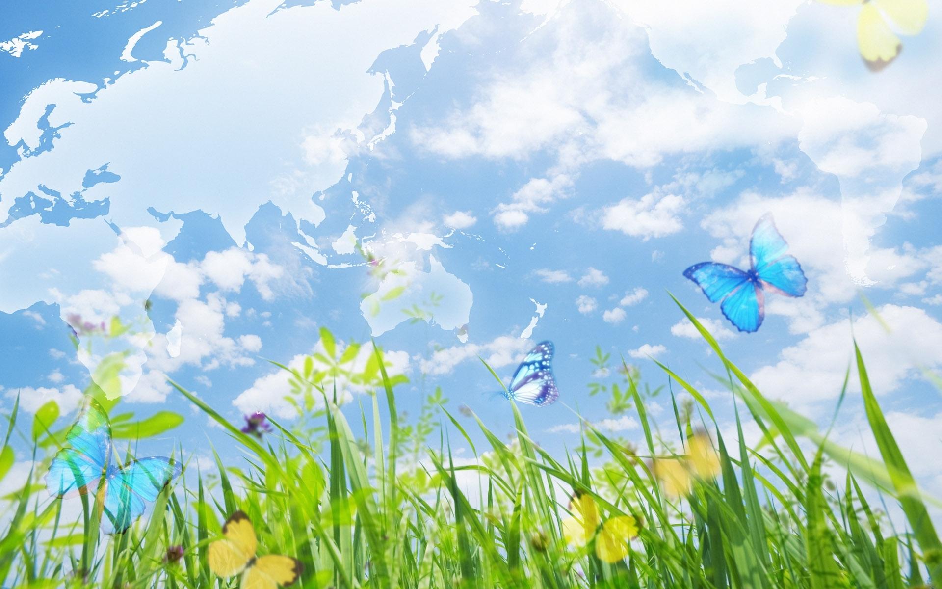 3166 скачать обои Пейзаж, Бабочки, Трава, Небо - заставки и картинки бесплатно