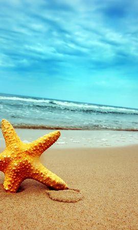 5063 скачать обои Пейзаж, Море, Звезды, Пляж - заставки и картинки бесплатно