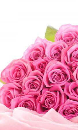 18564 baixar papel de parede Plantas, Flores, Rosas, Bouquets - protetores de tela e imagens gratuitamente