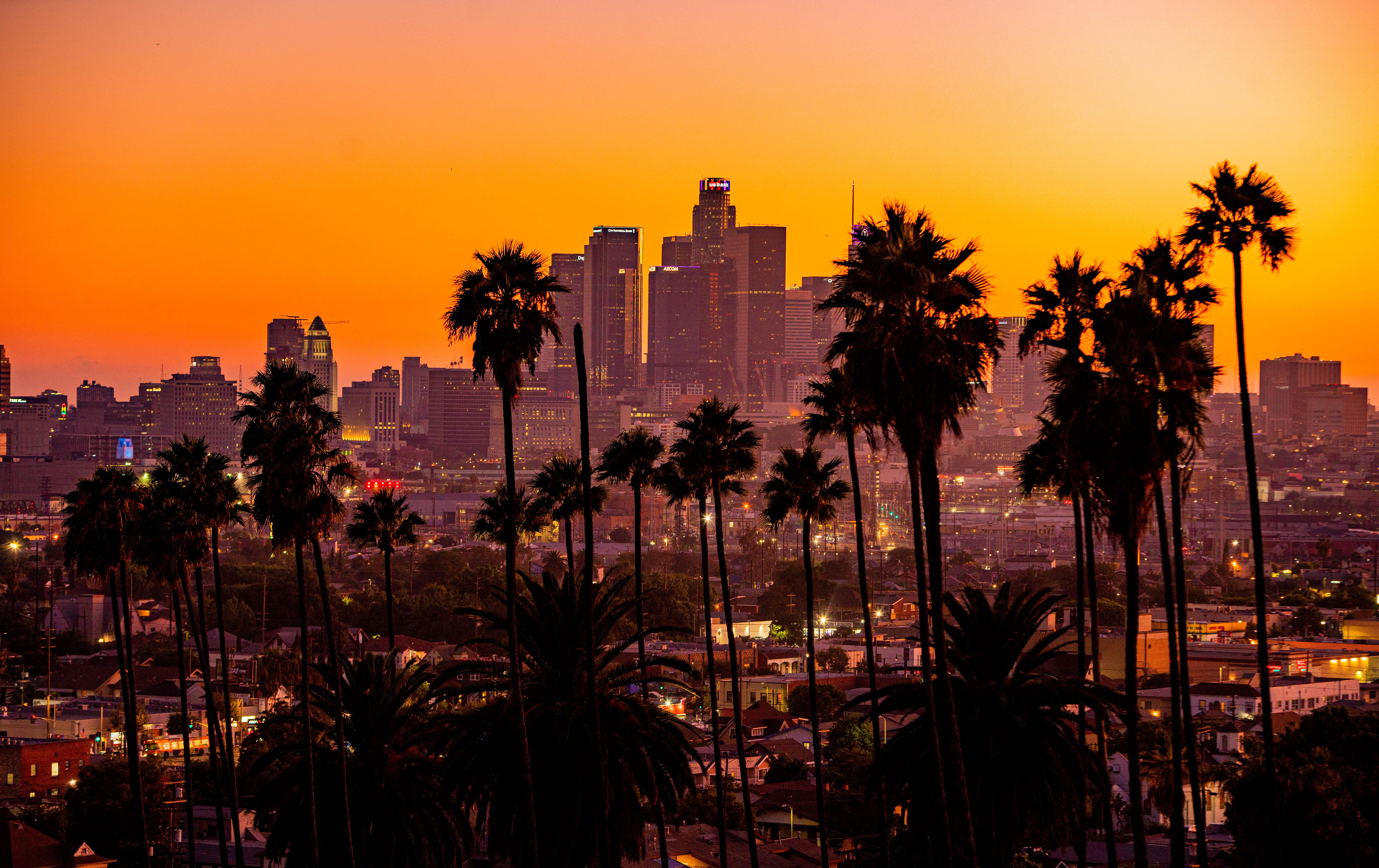 99572 скачать обои Пальмы, Лос-Анджелес, Небоскребы, Города, Закат, Город, Здания - заставки и картинки бесплатно