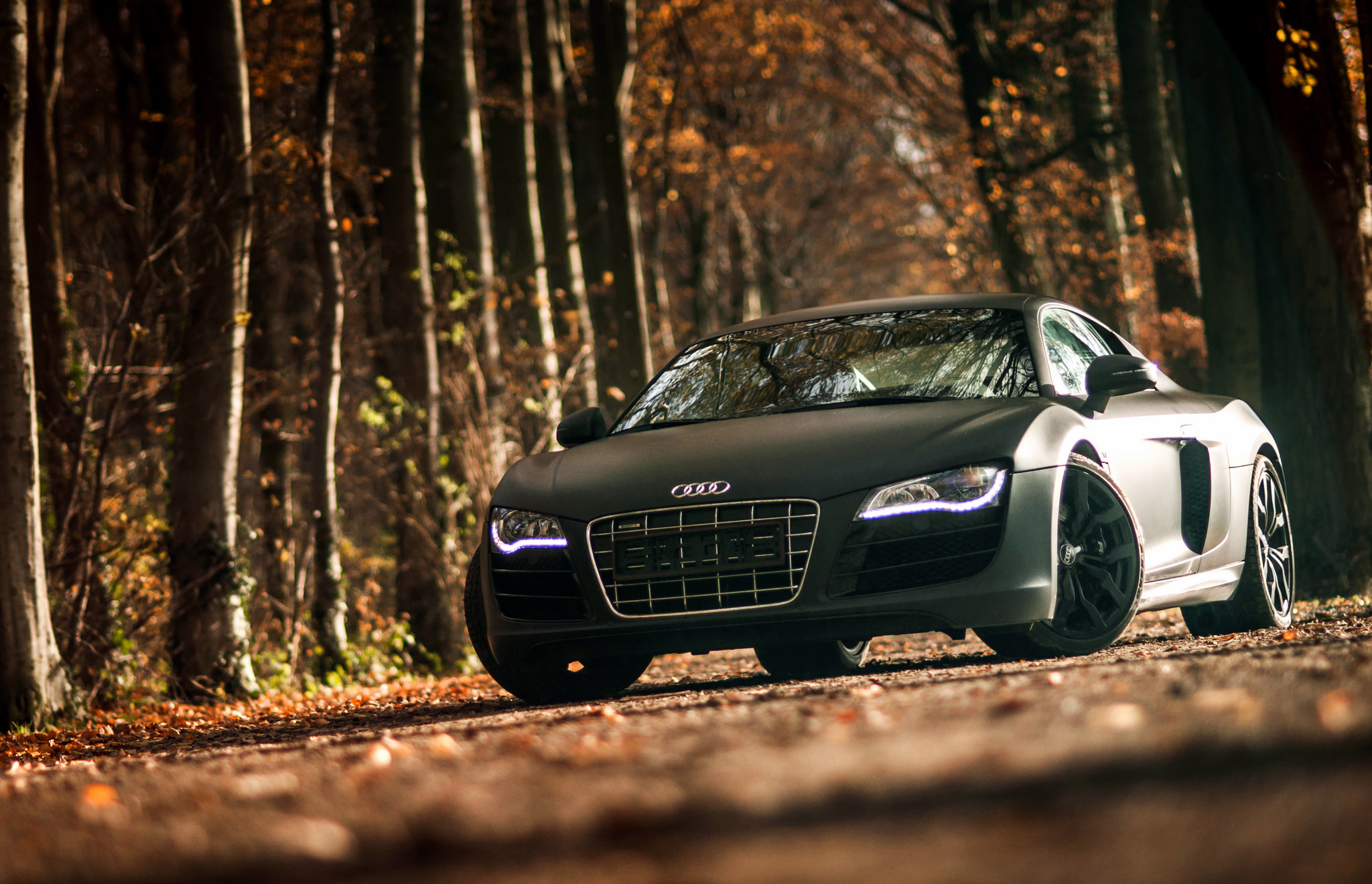 127257 download wallpaper Audi, Sports, Cars, Sports Car, R8, V10 screensavers and pictures for free