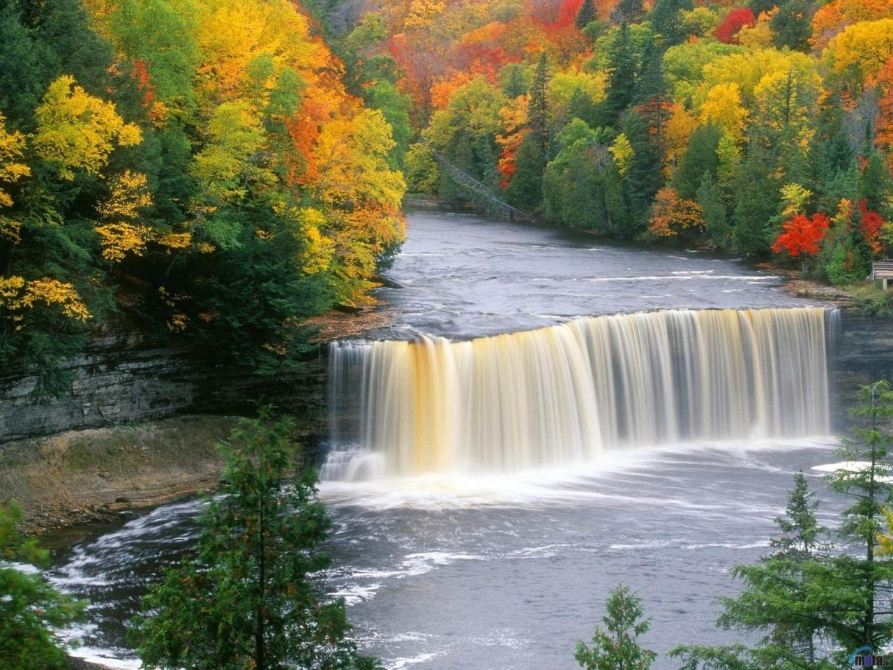 23585 скачать обои Пейзаж, Река, Деревья, Осень, Водопады - заставки и картинки бесплатно