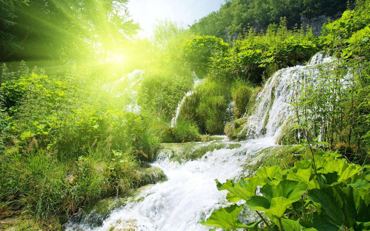 23137 скачать обои Пейзаж, Река, Водопады, Кусты - заставки и картинки бесплатно