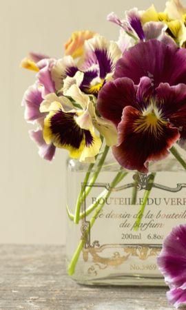 36794 télécharger le fond d'écran Plantes, Fleurs, Bouquets - économiseurs d'écran et images gratuitement