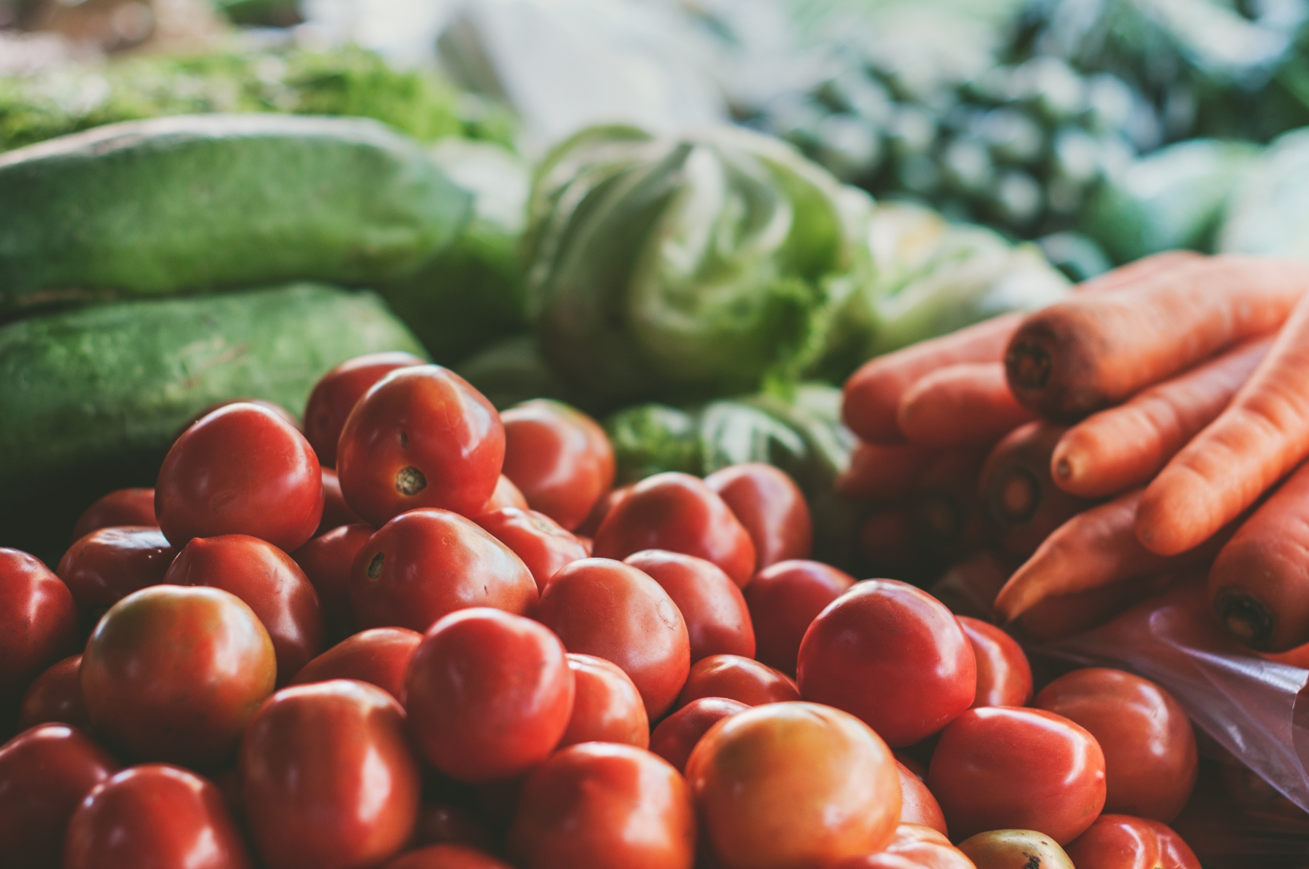 70108 скачать обои Еда, Томаты, Морковь, Капуста, Овощи - заставки и картинки бесплатно