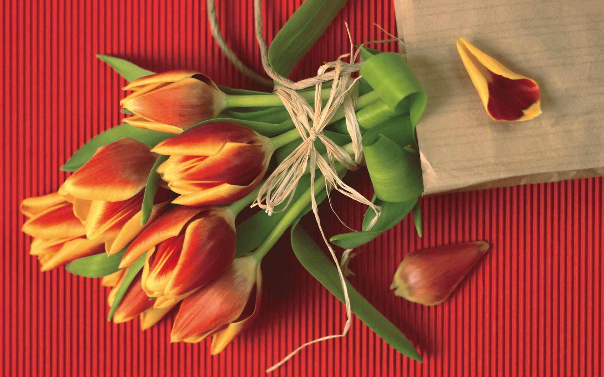 38143 скачать обои Растения, Цветы, Тюльпаны, Букеты - заставки и картинки бесплатно