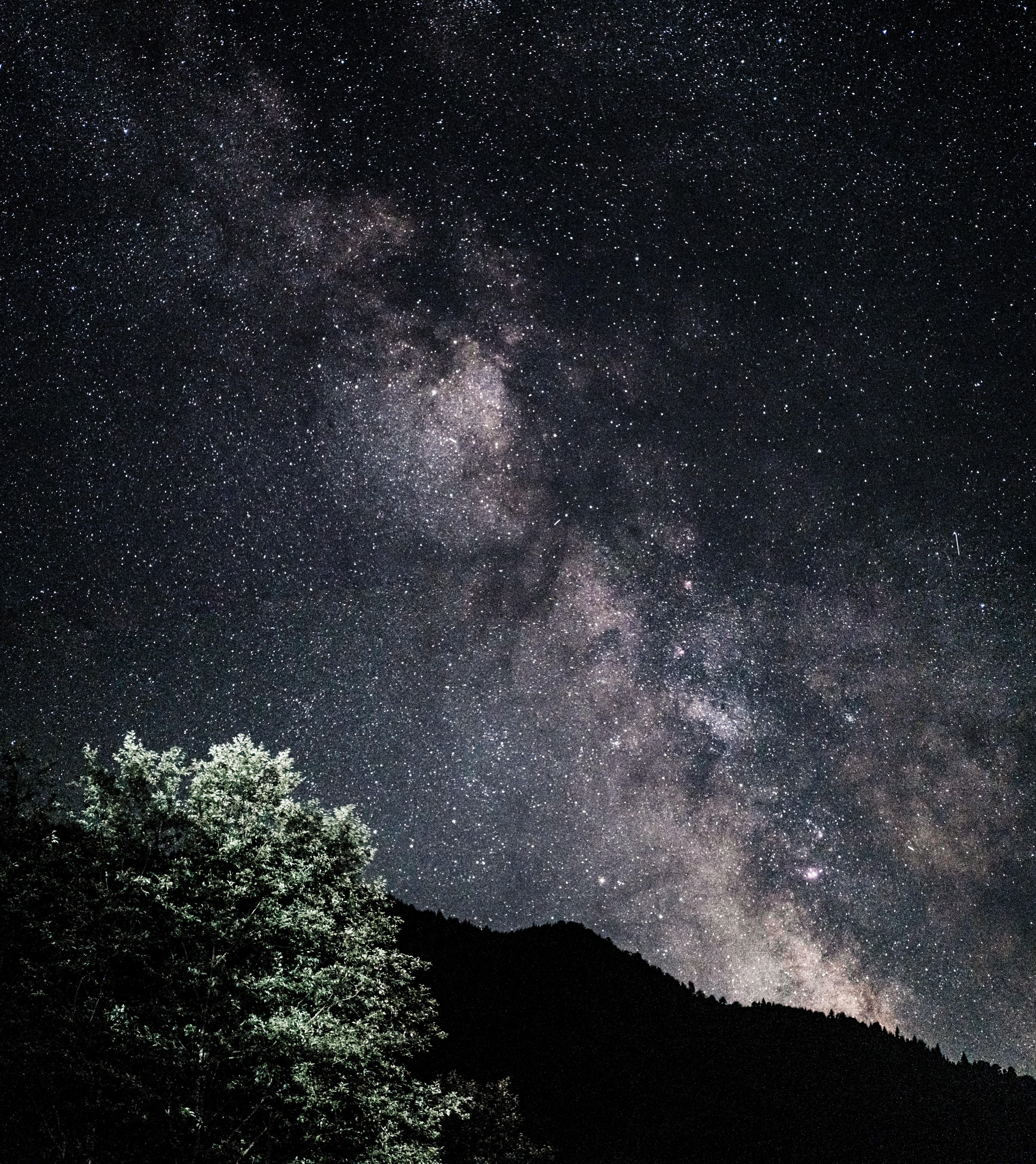 145252 скачать обои Темные, Звездное Небо, Туманность, Холмы, Кусты, Звезды - заставки и картинки бесплатно